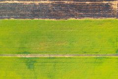 Aerial view, rice fields and rows of soil before plant. At Thialand stock image