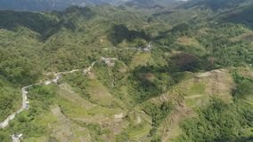 Rice terraces in the mountains. Philippines, Batad, Banaue. Aerial view of rice terraces on the slopes of the mountains, Banaue, Philippines. Rice cultivation Royalty Free Stock Photography