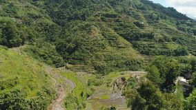 Rice terraces in the mountains. Philippines, Batad, Banaue. Aerial view of rice terraces on the slopes of the mountains, Banaue, Philippines. Rice cultivation Stock Photography