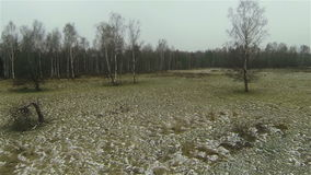 Aerial  view of rime on the field, snow in country. Aerial  rime on the field snow country side russian autumn stock video