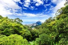 Aerial view of Rio de Janeiro through a lush forest Royalty Free Stock Photos