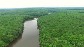Aerial view the river on green forest plain.. stock video footage
