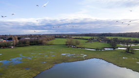 Aerial view of a river and a lake in wintertime. In the UK Stock Photography