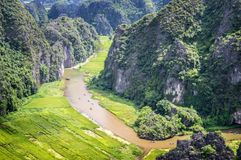Aerial view of the river among rice fields and limestone mountains, vietnamese scenic landscape at ninh Binh Vietnam. Aerial view of the river among rice fields Stock Image