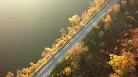 Aerial view on the river and tree in royalty free stock images