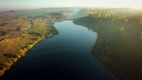 Aerial view on the river and tree in stock photo
