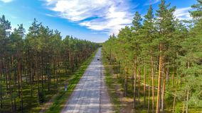 Aerial view of road across the forest.  Royalty Free Stock Photography