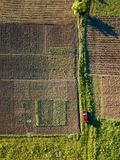 Auto rides on the road between fields for sowing. Aerial view of road among the agricultural areas of crop fields, along which the red car rides. The top view is Royalty Free Stock Image