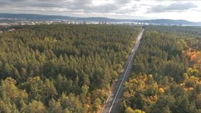 Aerial view on Road in the autumn forest. Road in the autumn forest aerial view,Road view from above stock footage