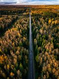 Aerial view of road in autumn forest. Fall landscape with road, red and yellow trees. Aerial view of road in autumn forest. Fall landscape with road, red royalty free stock photos