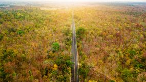 Aerial view of road in autumn forest at sunset. Amazing landscap. E with rural road, trees with red and orange leaves in day Stock Image