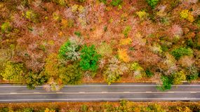 Aerial view of road in autumn forest at sunset. Amazing landscape with rural road, trees with red and orange leaves in day. royalty free stock images