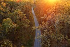 Aerial view of the road in the autumn forest at sunset royalty free stock images