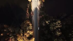 Aerial view of the road in autumn in-shore forest. Car is moving on a bridge over the river or lake stock footage