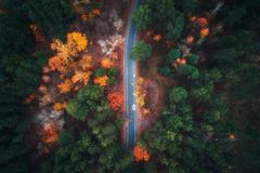 Aerial view of road in beautiful autumn forest Royalty Free Stock Photography