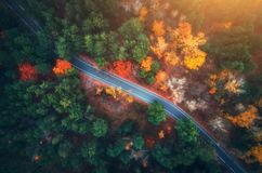 Aerial view of road in beautiful autumn forest at sunset Stock Photo