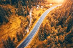 Aerial view of road in colorful orange forest at sunset in autumn