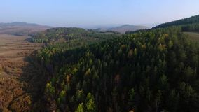 Aerial View Road In The Coniferous Forest On Lake Baikal, Buryatia, Russia stock footage