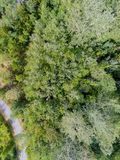A road crossing a forest. Aerial view of a road crossing a decidous temperate forest Royalty Free Stock Photography