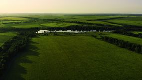 Aerial view of road in the fields. Aerial view of road in the green fields. Aerial view of road in the fields. Aerial view of road in the green fields stock video