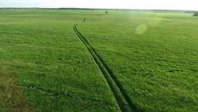 Aerial view of road in the fields. Aerial view of road in the green fields stock video footage