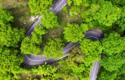 Aerial view on road in the forest. Highway throu the forest. View from a drone. Natural landscape in summer time from air. Travel - image royalty free stock photo