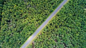 Aerial view on a road in a forest, Indre et Loire. Aerial photography on a road in a forest, Indre et Loire, France Royalty Free Stock Image