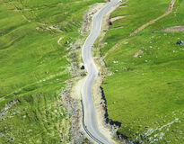 Aerial view of road. And green grass Royalty Free Stock Images