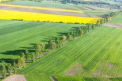 Aerial view of  road and green harvest fields Royalty Free Stock Photos