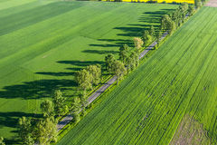 Aerial view of  road and green harvest fields Stock Image