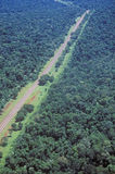 Aerial view of Road Running Through Rainforest, Argentina and Brazil Royalty Free Stock Image