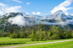 Aerial View road to Obertraun city. Road through pasture to Obertraun have tree on clear blue sky, Austria stock photo
