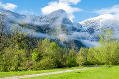 Aerial View road to Obertraun city. Road through pasture to Obertraun have tree on clear blue sky, Austria stock photography