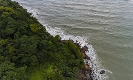 Aerial view of a rocky and green beach shore. Waves crashing on the rocks next to the lush trees stock photos