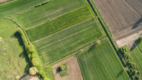 Aerial view of rural area. Aerial view of rural agricultural fieldst shot with drone Stock Photos