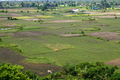 Aerial view of rural area Royalty Free Stock Image