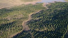 Aerial View Rural Landscape. Alentejo, Portugal stock video footage