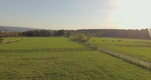 Aerial View of Rural Landscape. Amazing idyllic scenic aerial rural landscape with dirt road between green fields at sunset stock video footage