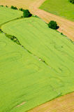 Aerial view on rural landscape background with plant fields Royalty Free Stock Photo