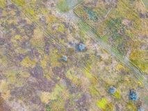 Forest and field with a trail aerial photography. Aerial view on rural pasture in evening light with dramatic shadow Royalty Free Stock Photography
