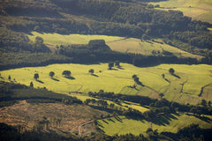Aerial view : rural scene of fields and meadows Royalty Free Stock Image