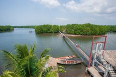 Aerial view, scenic landscape of mangrove forest, a group of tourists going over the suspension bridge over the river. Koh Kong, royalty free stock photos
