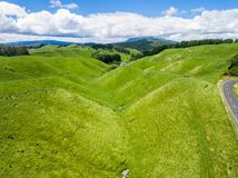Aerial view sheep farm hill, Rotorua, New Zealand. Aerial view of beautiful sheep farm meadows of green grass on rolling hills in Rotorua, New Zealand North Royalty Free Stock Images