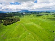 Aerial view sheep farm hill, Rotorua, New Zealand. Aerial view of beautiful sheep farm meadows of green grass on rolling hills in Rotorua, New Zealand North Royalty Free Stock Photos