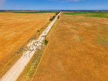 Aerial view of sheep on outback road. Featuring herd of sheep. Complete with sheep dogs, farmer and farm utes. Circle Irrigation Centre Pivot in view Royalty Free Stock Image