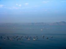 Aerial view of ships at Lima bay Royalty Free Stock Photos
