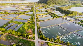 Aerial view of shrimp farm and air purifier in Thailand. Continu Stock Images