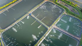 Aerial view of shrimp farm and air purifier in Thailand. Continuous growing aquaculture business is exported to the international royalty free stock image