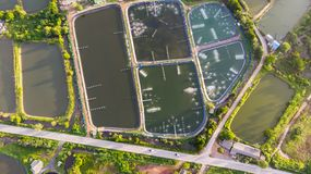 Aerial view of shrimp farm and air purifier in Thailand. Continu Royalty Free Stock Image