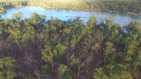 Aerial view of Ski Boat on the Murray River Australia stock video footage